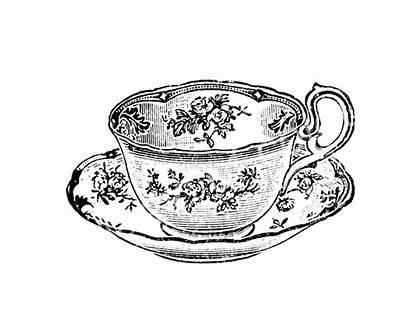 Tea Teacup Wonderland Drawing Sketch Coloring Alice