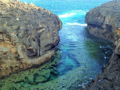 zealand tourist swept   waves  rescue