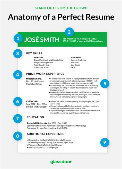 What A Student Resume Should Look Like by This Is What The Cv Looks Like In 2019