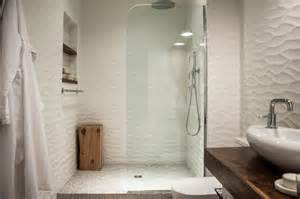 Handicap Shower Head Picture