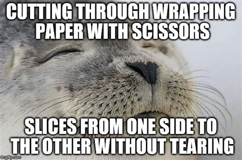 Wrapping Presents Meme - after wrapping all of my christmas presents i have to say this is just so satisfying imgflip