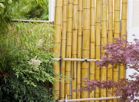 Comment Fabriquer Une Le En Bambou by Fabriquer Un Brise Vue En Bambou