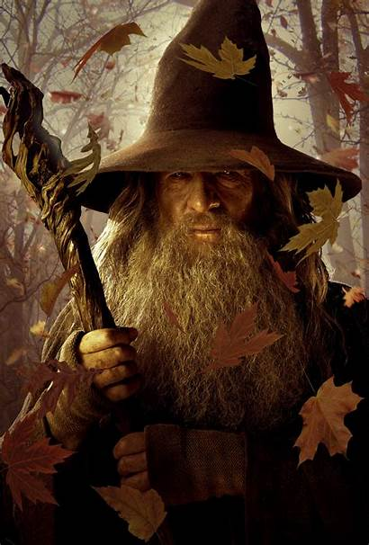 Hobbit Gandalf Staff Posters Wizards Leaves Wallpapers