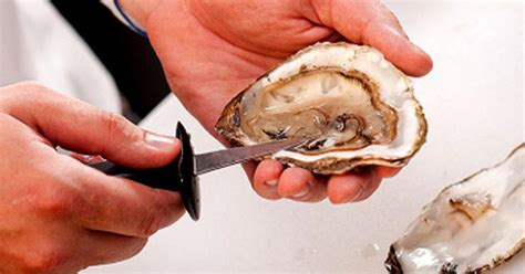 texas woman dies  eating contaminated oysters cbs news