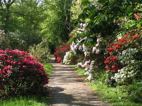 free garden paths cliserpudo beautiful flower garden path images