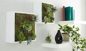 Vertikaler Garten Kaufen : vertikaler garten f r innen vertikaler garten vertikaler garten diy und gartenprodukte ~ Watch28wear.com Haus und Dekorationen