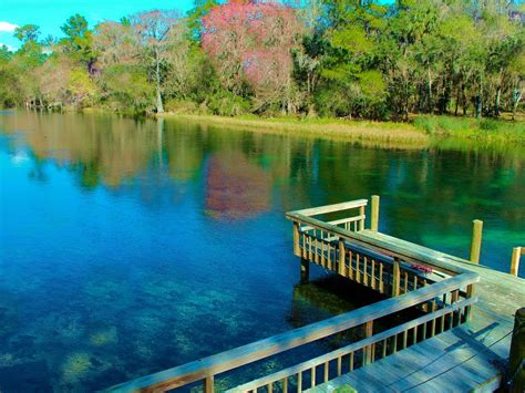 rainbow river cabin rentals whimsical cabin on rainbow river free kayaks vrbo