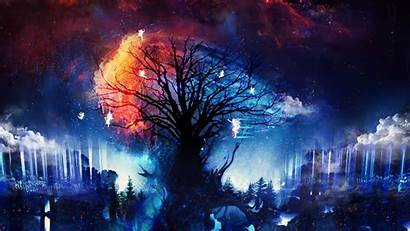 Fantasy Stars Fairies Trees Artwork Px Desktop