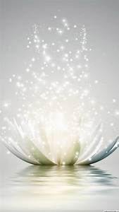 Lotus Flower Android Wallpaper Free Download for Mobile
