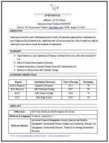 job resume exles pdf free 100 cv templates sle template exle of beautiful excellent professional curriculum vitae