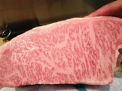 angus beef slice by hjj wagyu beef wagyu f1 using black angus page 2 cattletoday
