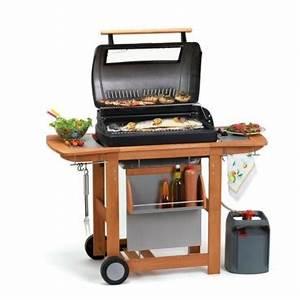 Barbecue A Gaz Castorama : barbecue nomadeo castorama ~ Melissatoandfro.com Idées de Décoration