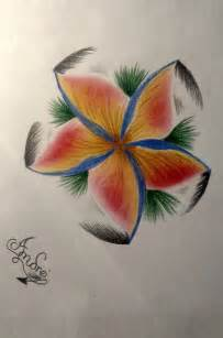 Exotic Flower Drawings