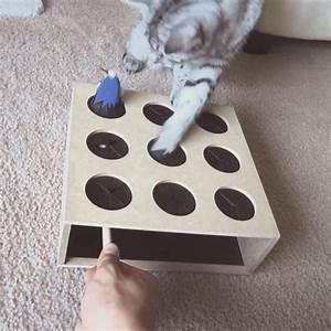 Jouets Pour Chats D Appartement : 15 best jouets pour chats images on pinterest toys for ~ Melissatoandfro.com Idées de Décoration