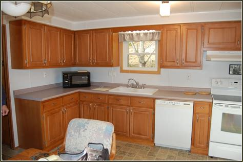 Home Depot Cabinet Refacing Cost — New Home Design The
