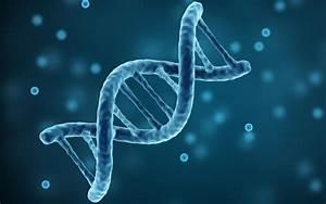 Williston To Host Genetics Presentation