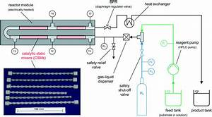Continuous Flow Hydrogenations Using Novel Catalytic Static Mixers Inside A Tubular Reactor