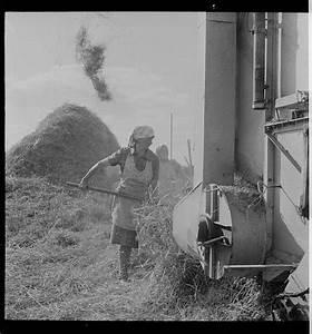 Práce v zemědělství německo