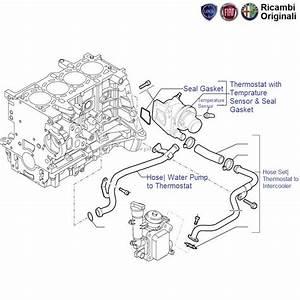 Fiat 500 Pop Diagram  Fiat  Wiring Diagram Images