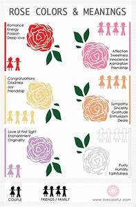 「ローズカラーの意味」のおすすめアイデア 25 件以上   Pinterest   花の意味、黄色のバラ、色の意味