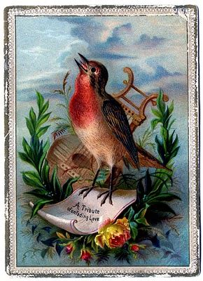 vintage clip art amazing bird card robin