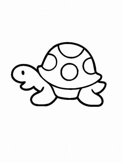 Turtle Coloring Pages Simple Printable Children Drawing