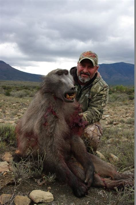 trophy hunting baboon image gallery