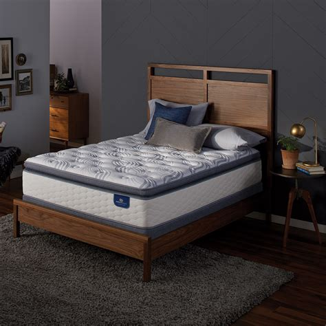 perfect sleeper teddington plush cal king mattress