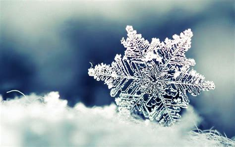 Wallpaper Snowflakes by Snowflakes Wallpapers Wallpaper Cave