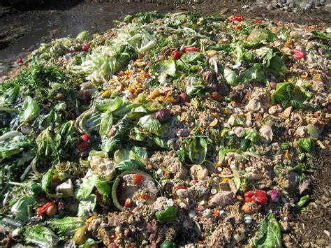 compost cuisine composting at the lyndon freighthouse restaurant uses