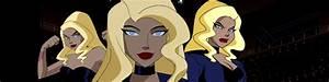 DIY Justice League Black Canary Costume | Wholesale ...