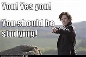 should be studying on Pinterest | Studying, Loki Funny and ...