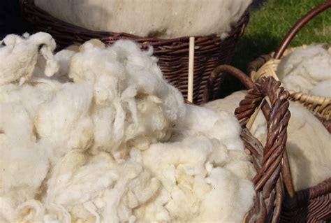 Daemmstoff Aus Schafwolle by Schafwolle Als D 228 Mmstoff 187 Eigenschaften Vor Nachteile