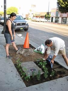 Urban Gardening Definition : guerrilla gardening wikipedia ~ Eleganceandgraceweddings.com Haus und Dekorationen