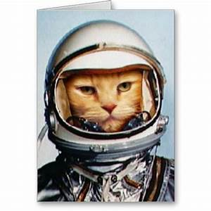 Astronaut Cat (page 2) - Pics about space