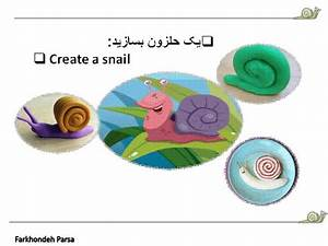 Animals  U2013project Snail