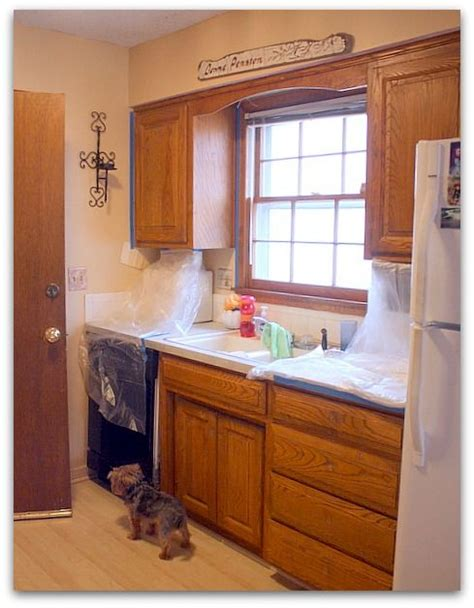 Repainting Kitchen Cupboards by 25 Best Ideas About Repainted Kitchen Cabinets On
