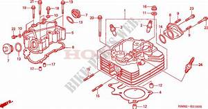 Gz 9086  Diagram Of Honda Atv Parts 2004 Trx250tm A