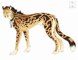 King Cheetah Wallpaper