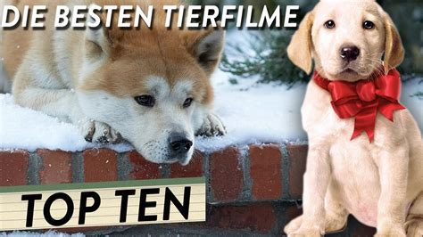 Die Besten Tierfilme  Top 10 Youtube