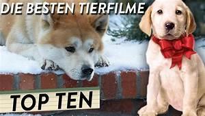 Besten Uhrenmarken Top 10 : die besten tierfilme top 10 youtube ~ Frokenaadalensverden.com Haus und Dekorationen