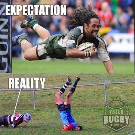 Rugby Memes - 19 best rugby memes images on pinterest rugby club american football and rugby
