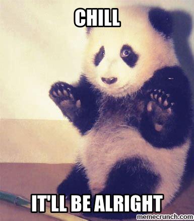 Panda Memes - panda