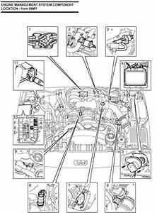 My 2003 Range Rover Won U0026 39 T Start  Ignition Works But It