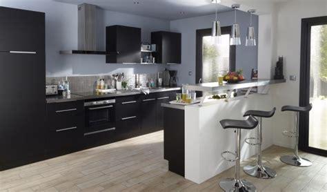 que faire contre les moucherons dans la cuisine des cuisines équipées pour toutes et tous bienchoisir
