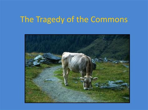 PPT - The Tragedy of the Commons PowerPoint Presentation ...