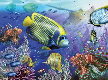 3d Animal Wallpaper 3d Fish Wallpaper - fish in the sea fish animals background wallpapers on