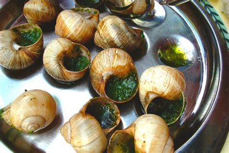 escargot cuisiné 7 expensive delicacies that used to be cheap
