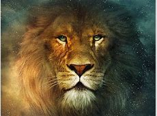 Chronicles Of Narnia Aslan Tattoo Quotes QuotesGram