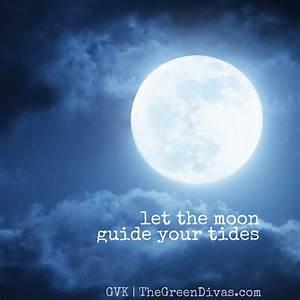 Gvk Gets Moonstruck With Astrologer Kathy Kerston  U2013 The
